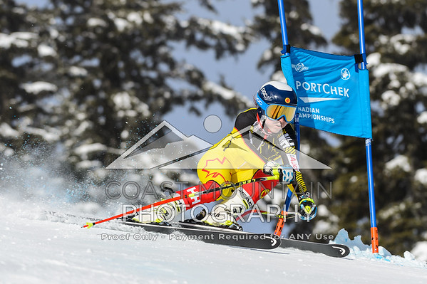 March 25th, 2016 - Alpine Canada Alpin national ski team members during Downhill training as part of the 2016 Sport Chek Canadian Championships in Whistler BC - Photo By Scott Brammer - coastphoto.com