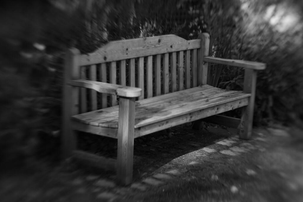 Backyard bench that Dad made