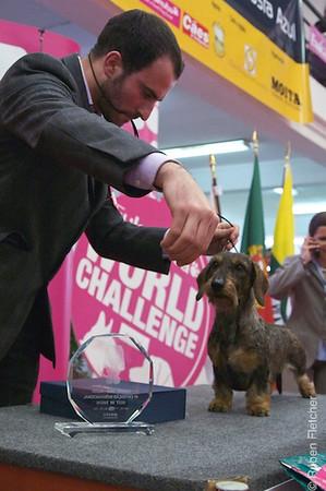 Moita 2009 - Exposição canina