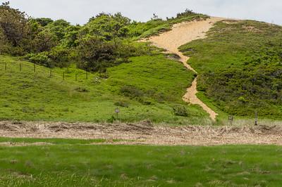 Dunes on Great Island