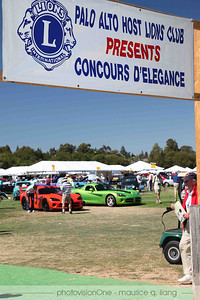 "Welcome to the concours.  First sight upon entering was the ""20 Years of Viper"" exhibit."