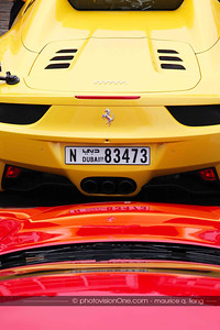 Dubai Ferrari club visits California.
