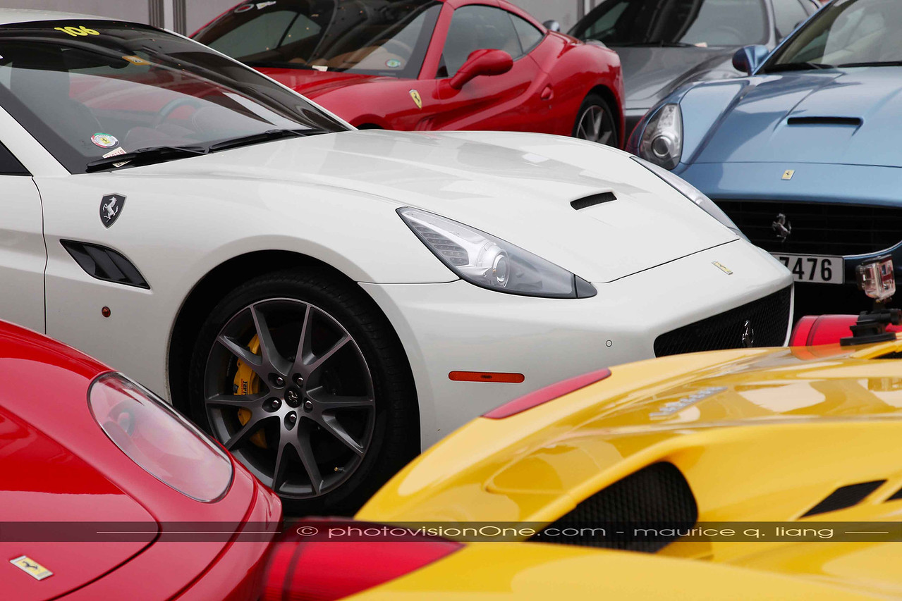A sea of Ferraris.