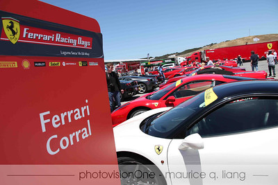 Ferrari lover's paradise in the corral.