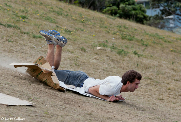 Newtown International Cardboard Box Sliding Championship, Macalister Park, Wellington, 23 March 2013