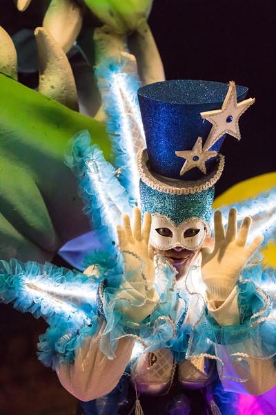 Carnaval 2017 Zondag