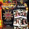 2011 fair poster