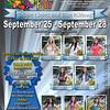 2013 fair poster