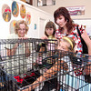 8/14/10 -- Seattle Humane Society Catapalooza event.  The Korolenko family gets aquainted with some of Everett's kittens available for adoption. photograph by: Dominique Riley