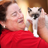 8/14/10 -- Seattle Humane Society Catapalooza event. SHS volunteer Donna can't help herself as she spots an adorable kitten up for adoption at the SC Cats table. photograph by: Dominique Riley