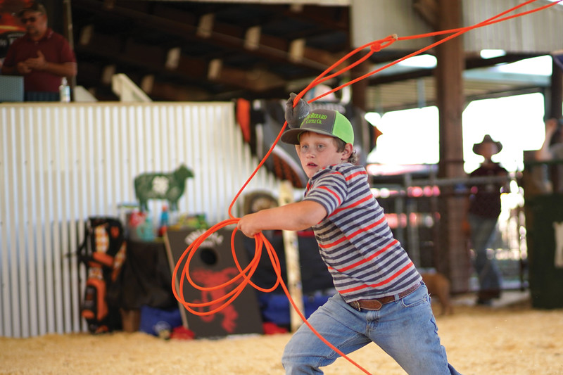 Matthew Gaston | The Sheridan Press <br /> Seconds after entering the practice arena, 8-year-old Tru Anesi springs into action, lassoing the first goat to run past him at the Cates Goat Roping event Saturday, Sept. 12, 2020.
