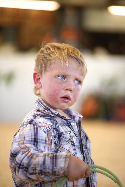 Matthew Gaston | The Sheridan Press <br /> Corbyn Cates, 3, gets frustrated because his goat will not run during the Pee Wee Roping at the Cates Goat Roping event Saturday, Sept. 12, 2020.