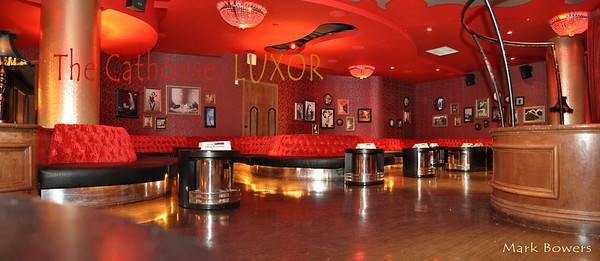 Free Download high quality photo gallery of Cathouse Luxor Casino Las Vegas mixer for Corporate Housing Executives with iS Vodka martinis. IS Vodka http://www.isvodka.com is a super-pure, ultra-premium vodka distilled 7 times, mixed with glacier water from the land of ice and snow - Iceland, and bottled in an award-winning decanter designed to delight drinkers and make a great gift.