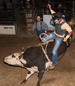 Falling Bull RIder 8473