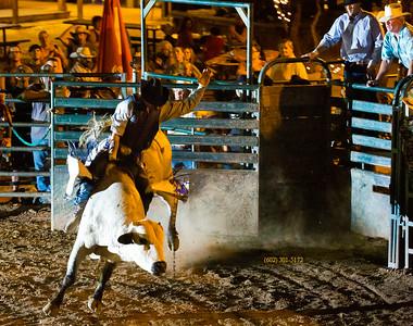 Rider on White bull 7608