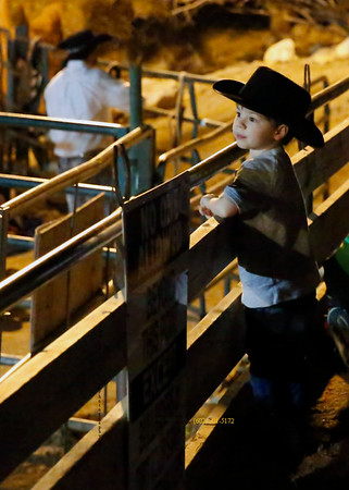 young Cowboy at rail 8435