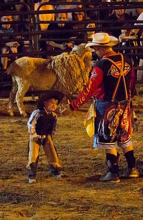 Small boy_sheep rider 7671