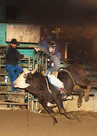 Bull RIder CvCk 1214 6169 stripes