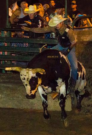 cowboy rider on bull 2926