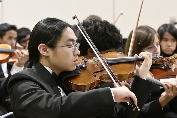 Chamber Orchestra - Musical Showcase