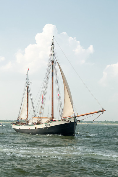 Parade of Sail, June 29th, 2009 - Tecla, The Netherlands