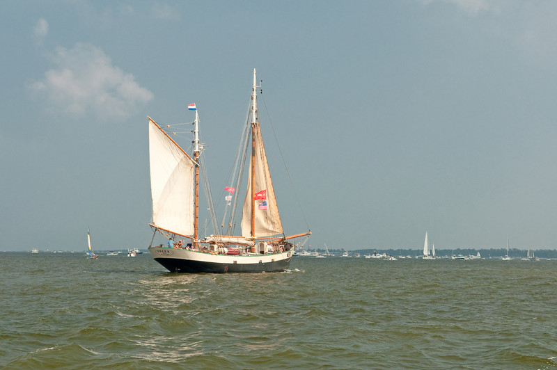 Parade of Sail, June 29th, 2009 - Tecla, Netherlands