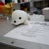 apt3photo chefsseals miami-2394