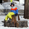 Chelmsford Winterfest. Ty Longo, 12, of Chelmsford, with Boy Scout Troop 75, perches on the seat made  from the 121-year-old purple beech that had to be cut down in 2013 on Chelmsford Common.  (SUN/Julia Malakie)