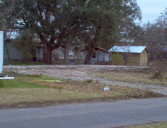 It's all gone, including the two dead trees that were by the driveway.