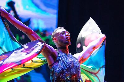 National Cherry Blossom Festival Opening Ceremony; Slylark Circus
