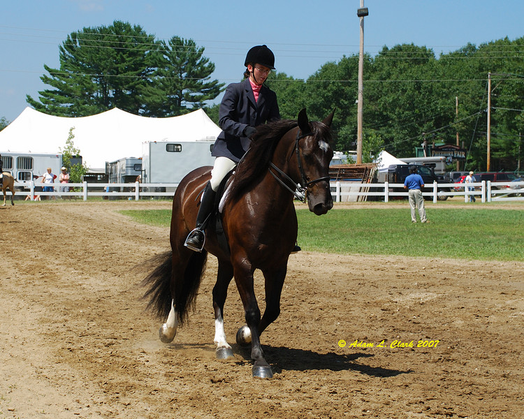 Horse show ring.