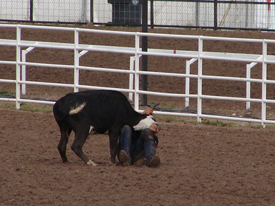 "Steer Wrestling (formerly called Bulldogging): He says ""I prefer standing up, if you don't mind."""