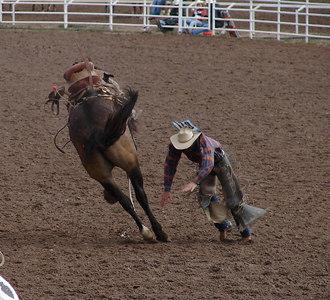 Saddle Bronc Riding: