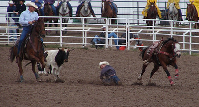 Steer Wrestling (formerly called Bulldogging): Being about 5 feet closer to the bull before jumping off the horse might have helped.