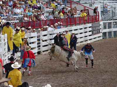 Bull Riding: The clowns serve a serious purpose out there.