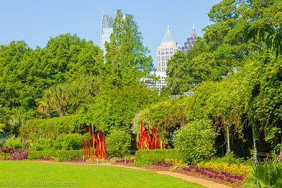 Chihuly at Atlanta Botanical gardens
