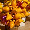 Solanum Mammosum - Poisonous but tempting