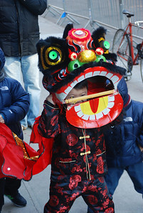 young boy in Chinese lion costume, China Town, NYC
