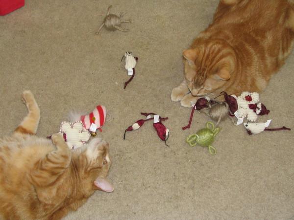 Calvin & Hobbes Christmas