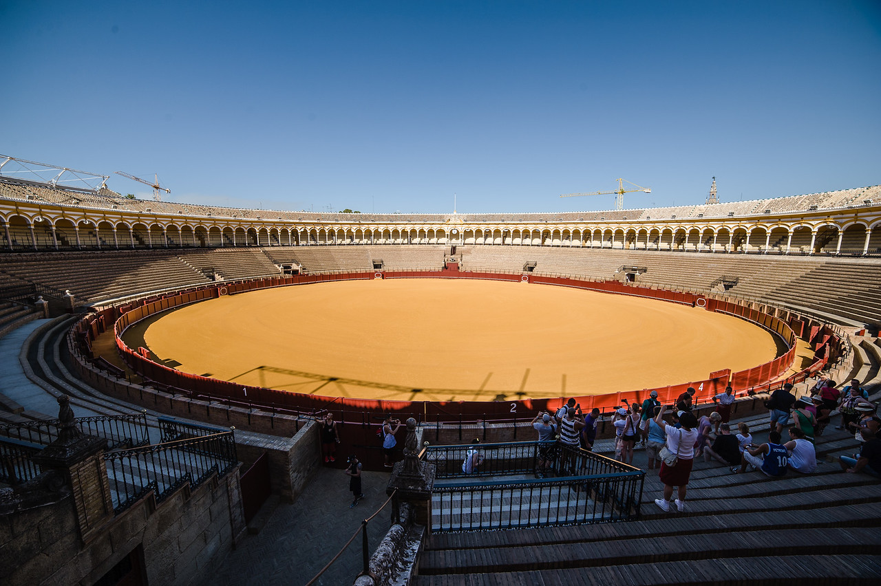 Our one and only foray into a bull-fighting ring, no mauling occurred. Promise!