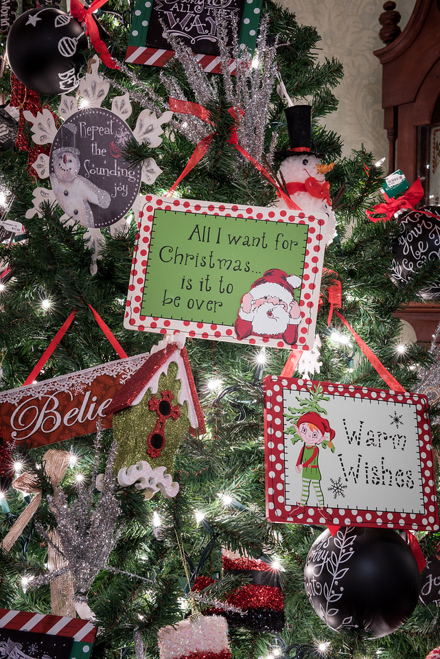 Caswell-Christmas-4033