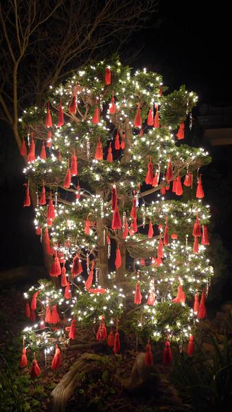 Mom's Christmas Tree.