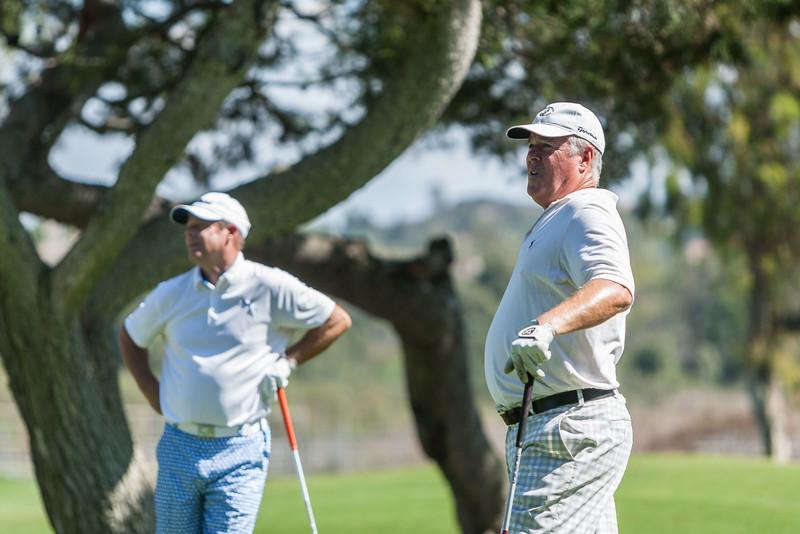 Golf298