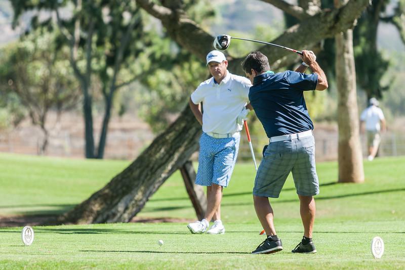 Golf308