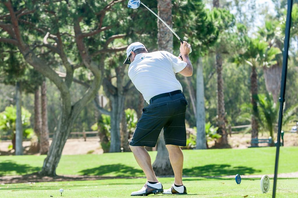 Golf213