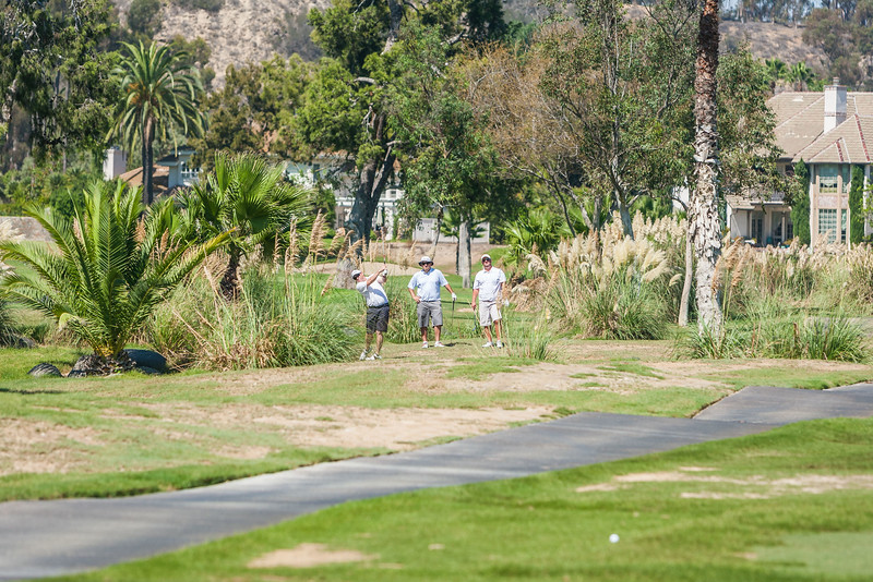 Golf179