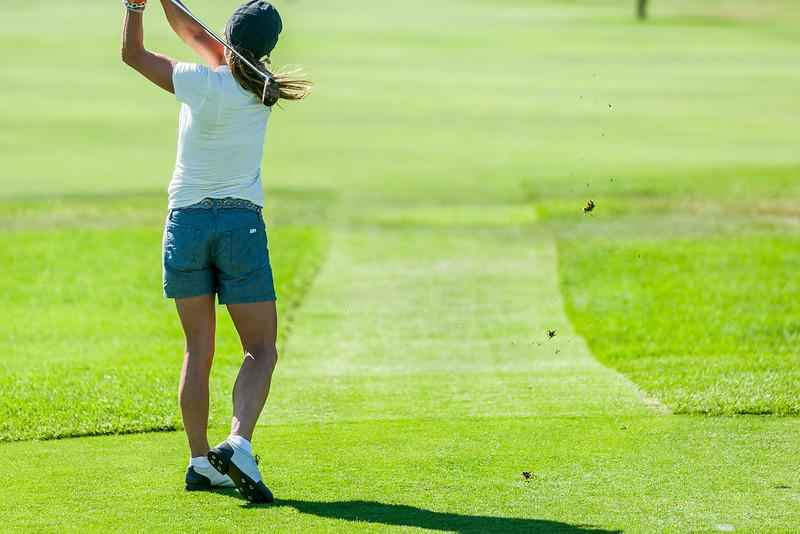 Golf441