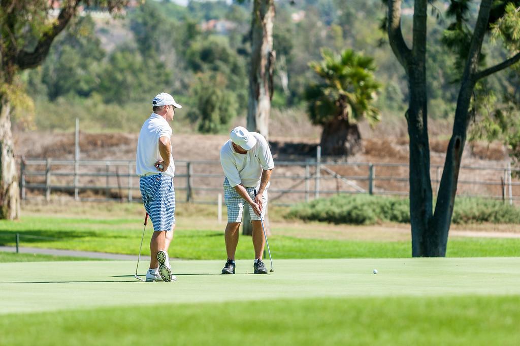 Golf242