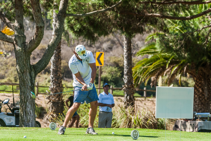 Golf342