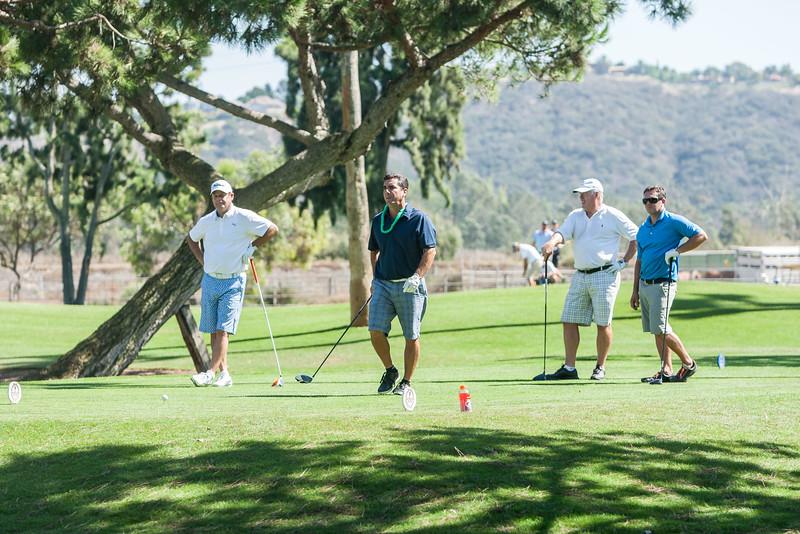 Golf299